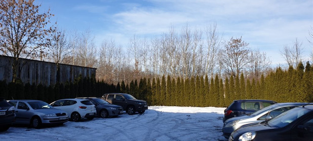 Lokal biurowy do wynajęcia 470 m² Sosnowiec M. Sosnowiec Pogoń - zdjęcie 2