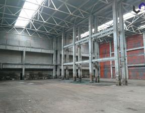 Magazyn, hala do wynajęcia, Katowice Ligota, 4000 m²