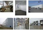 Magazyn, hala do wynajęcia, Czeladź, 8127 m² | Morizon.pl | 2861 nr6