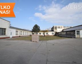Działka na sprzedaż, Strzegom, 31386 m²
