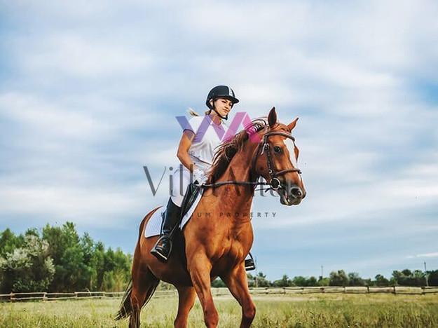 Morizon WP ogłoszenia | Dom na sprzedaż, Konstancin Wczasowa, 258 m² | 7186