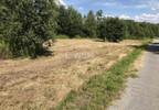 Działka na sprzedaż, Karniowice Parkowa, 6935 m² | Morizon.pl | 2391 nr6