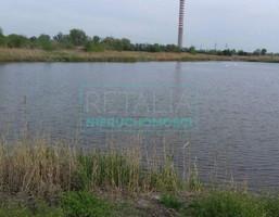 Morizon WP ogłoszenia   Działka na sprzedaż, Domaniewek, 22000 m²   7763
