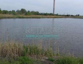 Działka na sprzedaż, Domaniewek, 22000 m²
