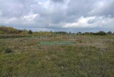 Działka na sprzedaż, Domaniewek, 25000 m²