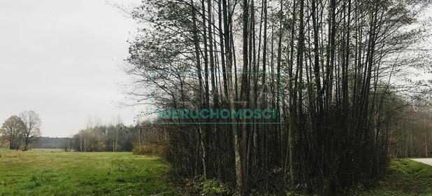 Działka na sprzedaż 4500 m² Grodziski Jaktorów Budy Michałowskie - zdjęcie 2