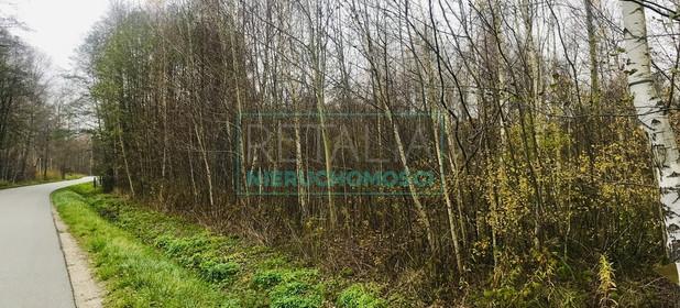 Działka na sprzedaż 4500 m² Grodziski Jaktorów Budy Michałowskie - zdjęcie 3