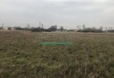 Działka na sprzedaż, Grodzisk Mazowiecki, 6200 m²