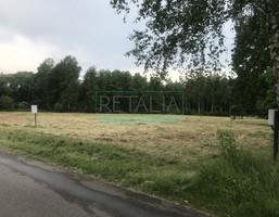 Morizon WP ogłoszenia | Działka na sprzedaż, Adamów-Wieś, 4137 m² | 8051
