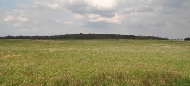 Działka na sprzedaż 13579 m² Policki Dobra (szczecińska) Buk - zdjęcie 3