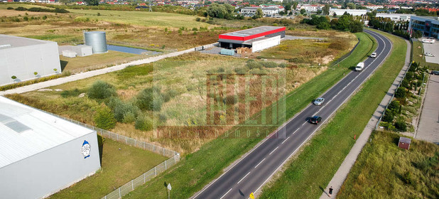 Działka na sprzedaż 2900 m² Policki Dobra (szczecińska) Mierzyn Lubieszyńska - zdjęcie 1