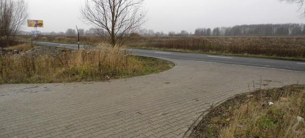 Działka na sprzedaż 9800 m² Szczecin Dąbie - zdjęcie 2