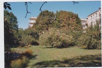 Działka na sprzedaż 4466 m² Toruń Chełmińskie Przedmieście Bartkiewiczówny  - zdjęcie 3
