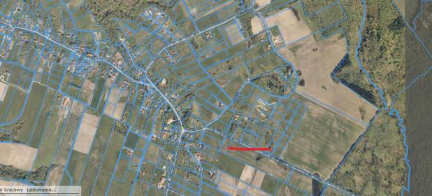 Działka na sprzedaż 3100 m² Elbląski (Pow.) Tolkmicko (Gm.) Łęcze - zdjęcie 2