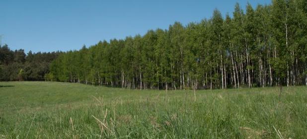 Działka na sprzedaż 3000 m² Olsztyn Mazurskie - zdjęcie 3