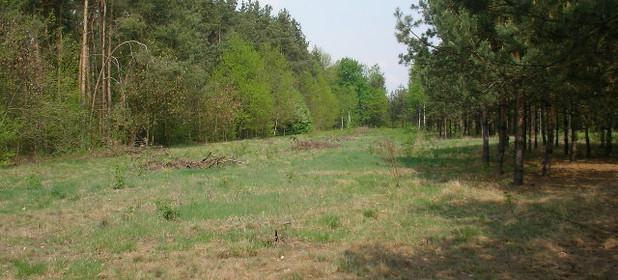 Działka na sprzedaż 5006 m² Grójecki (pow.) Grójec (gm.) Mirowice - zdjęcie 2