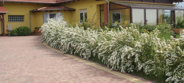 Dom na sprzedaż 260 m² Opolski (pow.) Turawa (gm.) Turawa Sosnowa - zdjęcie 2