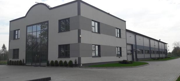 Magazyn do wynajęcia 1300 m² Legnica Bielany Złotoryja KOZÓW - zdjęcie 2