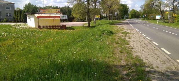 Działka na sprzedaż 2800 m² Warszawski Zachodni (Pow.) Kampinos (Gm.) Wola Pasikońska Wola Pasikońska 19B - zdjęcie 3