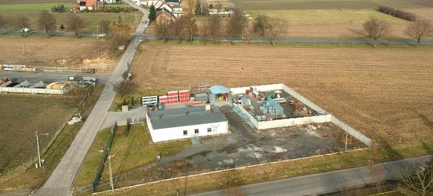 Działka do wynajęcia 1100 m² Krapkowicki Krapkowice Żużela - zdjęcie 2