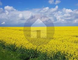 Morizon WP ogłoszenia   Działka na sprzedaż, Sobótka, 4700 m²   2938