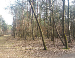 Morizon WP ogłoszenia | Działka na sprzedaż, Władysławów, 63900 m² | 1506