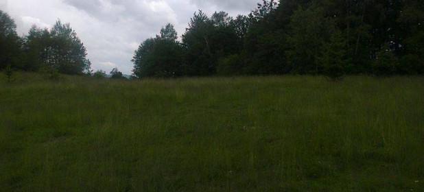 Działka na sprzedaż 11400 m² Żywiecki Milówka Nieledwia Malownicze miejsce - zdjęcie 2