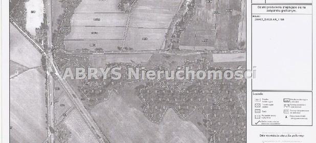 Działka na sprzedaż 41500 m² Elbląski Pasłęk Majki - zdjęcie 1