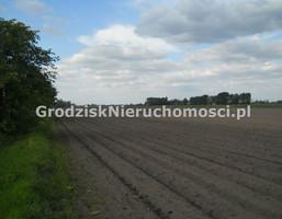 Morizon WP ogłoszenia | Działka na sprzedaż, Stary Drzewicz, 84720 m² | 4783