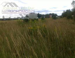 Morizon WP ogłoszenia | Działka na sprzedaż, Sławków, 3986 m² | 6540