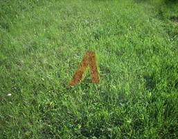 Morizon WP ogłoszenia | Działka na sprzedaż, Kraków Skotniki, 8600 m² | 2413