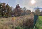 Morizon WP ogłoszenia | Działka na sprzedaż, Lipowo, 7700 m² | 7099