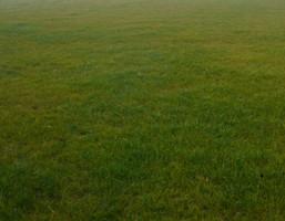 Morizon WP ogłoszenia | Działka na sprzedaż, Janki al. Krakowska, 23000 m² | 4699