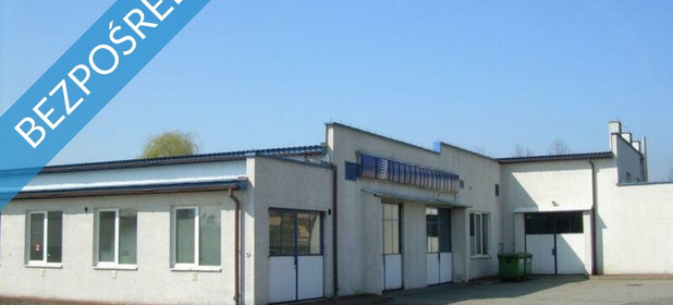 Działka na sprzedaż 13000 m² Nowy Sącz Tarnowska  - zdjęcie 3