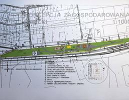 Morizon WP ogłoszenia   Działka na sprzedaż, Kruszyna, 42000 m²   9815
