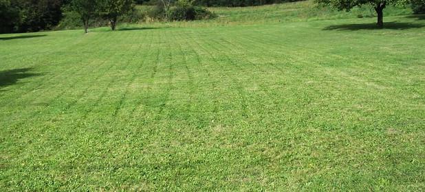 Działka na sprzedaż 2000 m² Chrzanowski Trzebinia Dulowa - zdjęcie 2