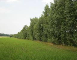 Morizon WP ogłoszenia | Działka na sprzedaż, Mińsk Mazowiecki, 3800 m² | 5435