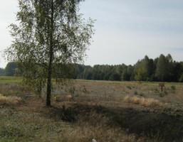 Morizon WP ogłoszenia   Działka na sprzedaż, Mińsk Mazowiecki, 2444 m²   0118