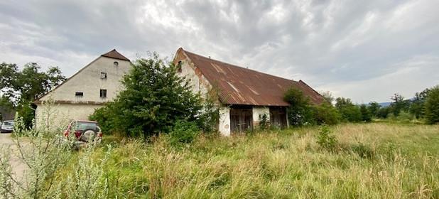 Działka na sprzedaż 10500 m² Kłodzki (pow.) Międzylesie (gm.) Szklarnia - zdjęcie 3