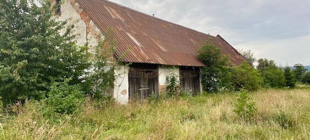 Działka na sprzedaż 10500 m² Kłodzki (pow.) Międzylesie (gm.) Szklarnia - zdjęcie 2