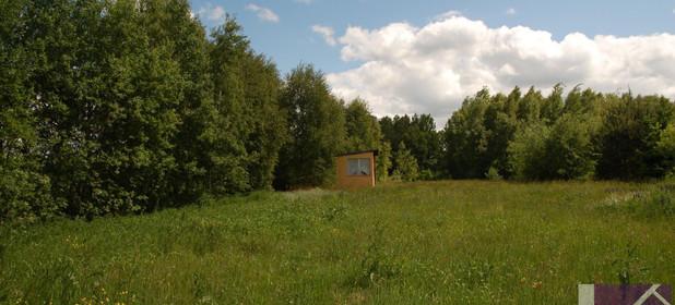 Działka na sprzedaż 3000 m² Wejherowski (pow.) Szemud (gm.) Donimierz Otalzynska - zdjęcie 1
