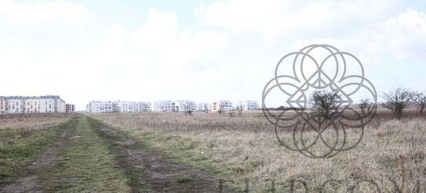Działka na sprzedaż 4856 m² Wrocław Wrocław - Psie Pole Widawa Fryzjerska - zdjęcie 2