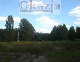 Morizon WP ogłoszenia   Działka na sprzedaż, Katowice Ligota-Panewniki, 10700 m²   1111