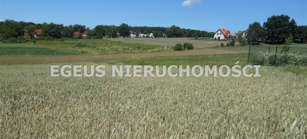 Działka na sprzedaż 2020 m² Mysłowice M. Mysłowice Wesoła Graniczna (1) - zdjęcie 3