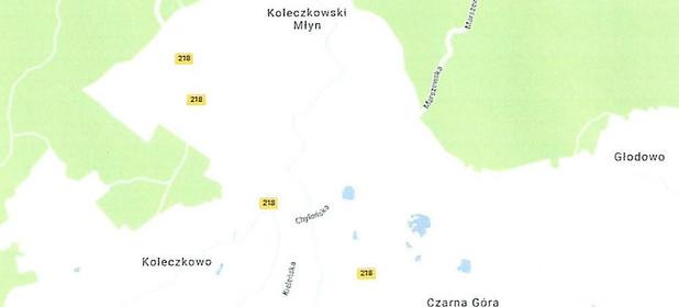 Grunt budowlany-wielorodzinny na sprzedaż 13000 m² Wejherowski (pow.) Szemud (gm.) Koleczkowo - zdjęcie 2