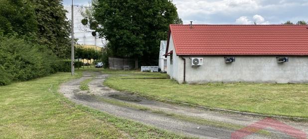 Działka na sprzedaż 2339 m² Poznań Grunwald Stary Grunwald Władysława Węgorka - zdjęcie 2