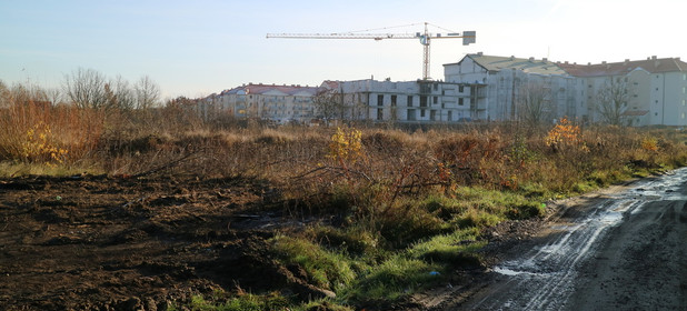 Działka do wynajęcia 8300 m² Gorzów Wielkopolski Myśliborska - zdjęcie 2