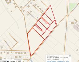 Morizon WP ogłoszenia | Działka na sprzedaż, Koszalin Złotych Kłosów, 21240 m² | 1118