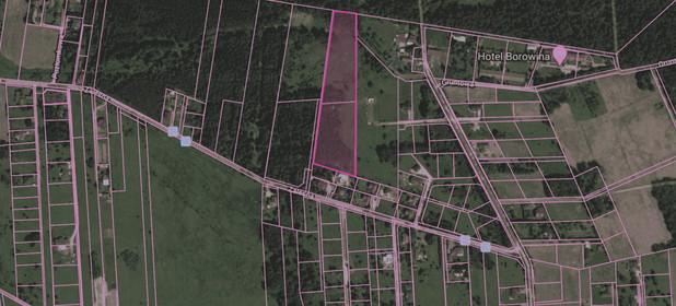 Działka na sprzedaż 20000 m² Piaseczyński (pow.) Konstancin-Jeziorna (gm.) Borowina - zdjęcie 2