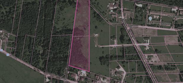 Działka na sprzedaż 20000 m² Piaseczyński (pow.) Konstancin-Jeziorna (gm.) Borowina - zdjęcie 1